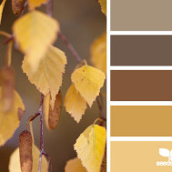 Copper Kitchen Colour Scheme