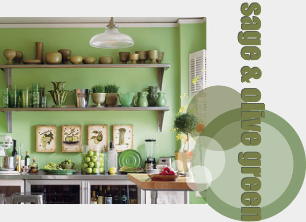 olive green kitchen accessories my kitchen