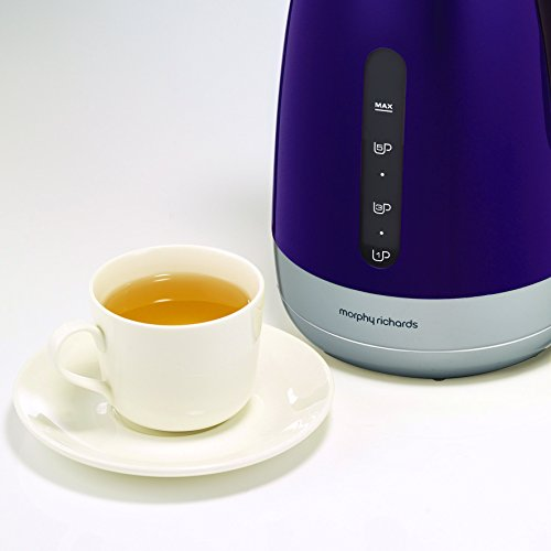 Morphy Richards 101208 Chroma Jug Kettle Plum Purple