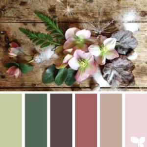 Olive Green Kitchen Colour Scheme