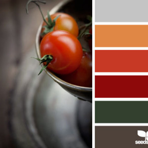 Orange Kitchen Colour Scheme