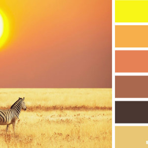 Yellow-Kitchen-Colour-Scheme-1
