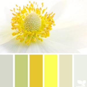 Yellow Kitchen Colour Scheme